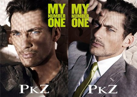 CAMPAIGN David Gandy for PKZ Number One FallWinter 2010. www.imageamplified.com, Image Amplified (3)