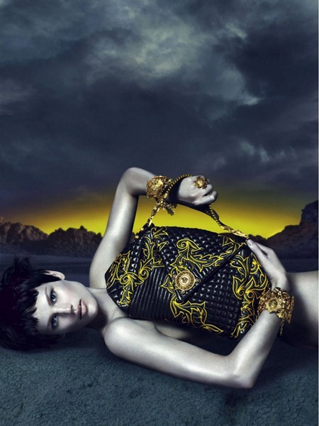 CAMPAIGN Saskia de Brauw for Versace Fall 2011 by Mert & Marcus. www.imageamplified.com, Image Amplified (5)
