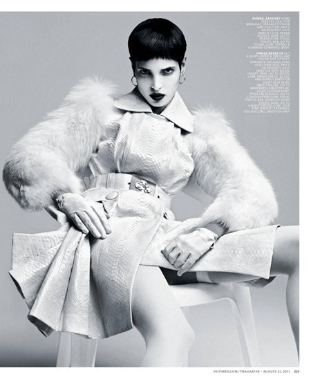 THE NEW YORK TIMES STYLE MAGAZINE Sexy Beast by Danko Steiner. Ana Steiner, Fall 2011, www.imageamplified.com, Image Amplified (5)
