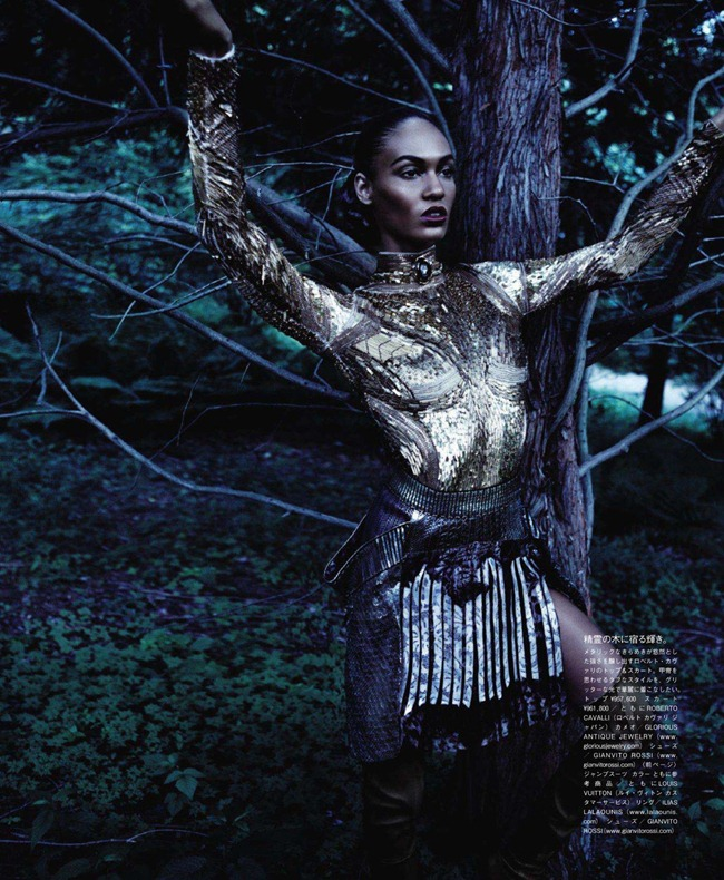 VOGUE JAPAN- Joan Smalls in Forgiving Wilderness by Solve Sundsbo. George Cortina, December 2011, www.imageamplified.com, Image Amplified1