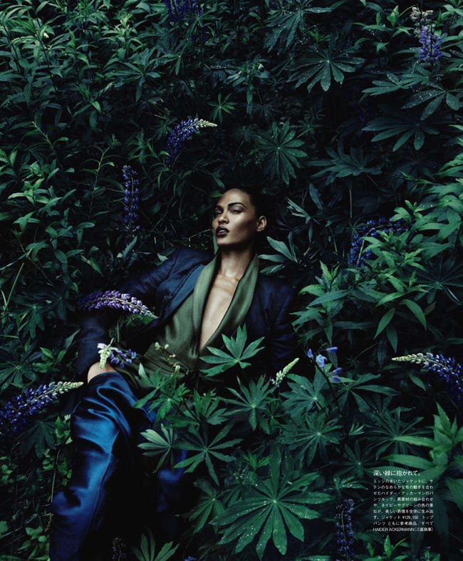 VOGUE JAPAN- Joan Smalls in Forgiving Wilderness by Solve Sundsbo. George Cortina, December 2011, www.imageamplified.com, Image Amplified3
