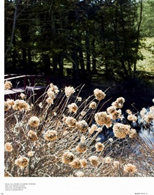 BLACK MAGAZINE Ashley Smith by Derek Kettela. Shin Arima, www.imageamplified.com, Image Amplified (2)