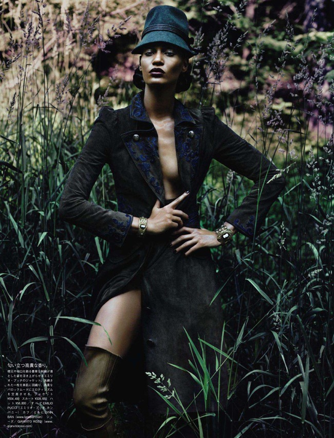 VOGUE JAPAN- Joan Smalls in Forgiving Wilderness by Solve Sundsbo. George Cortina, December 2011, www.imageamplified.com, Image Amplified8