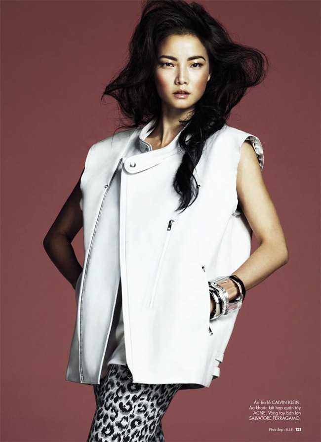ELLE VIETMAN- Jay Shin by Andrew Yee. Christopher Campbell, February 2012, www.imageamplified.com, Image Amplified0