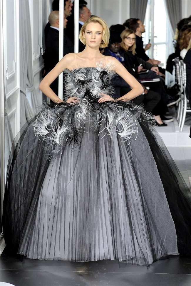 PARIS HAUTE COUTURE Dior Spring 2012 Couture. www.imageamplified.com, Image Amplified (28)