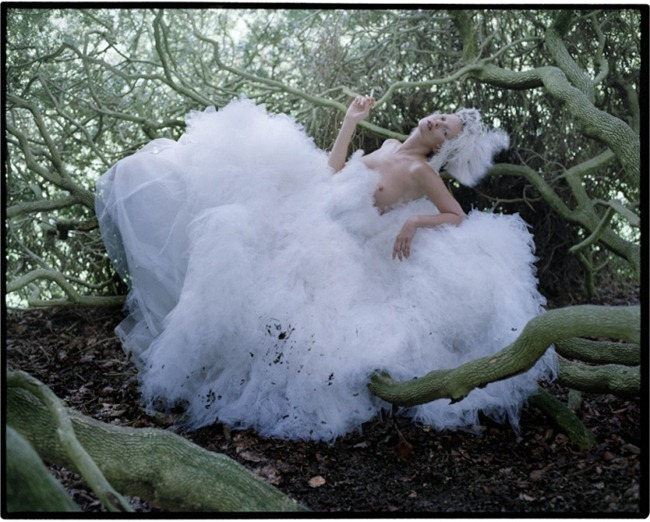 LOVE MAGAZINE Waltz Darling by Tim Walker. Katie Grand, Fall 2012, www.imageamplified.com, image Amplified (6)