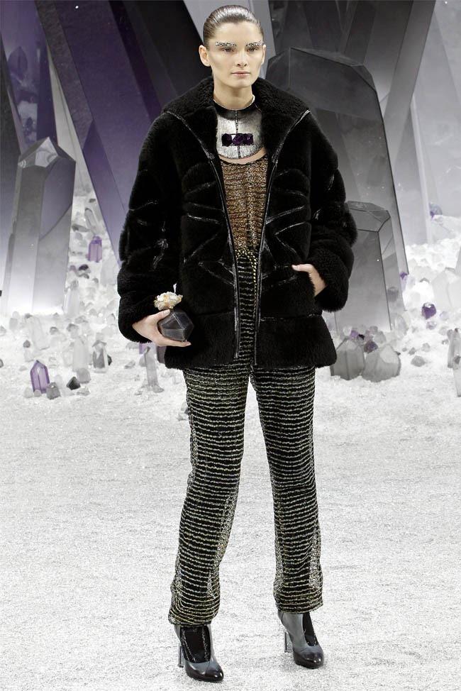 PARIS FASHION WEEK Chanel Fall 2012. www.imageamplified.com, Image Amplified (45)