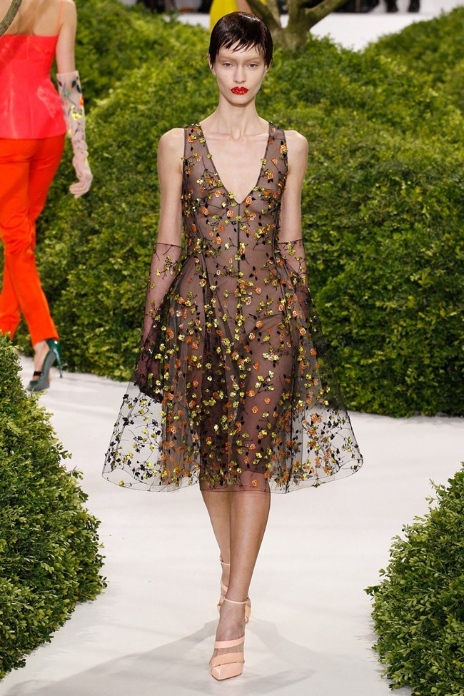 PARIS HAUTE COUTURE- Christian Dior Spring 2013. www.imageamplified.com, Image Amplified (35)