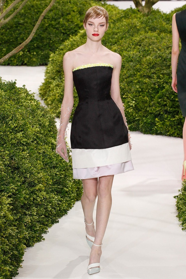 PARIS HAUTE COUTURE- Christian Dior Spring 2013. www.imageamplified.com, Image Amplified (23)