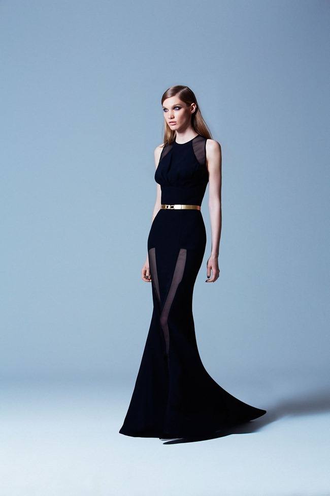 COLLECTION- Elie Saab Pre-Fall 2013. www.imageamplified.com, Image Amplified (38)
