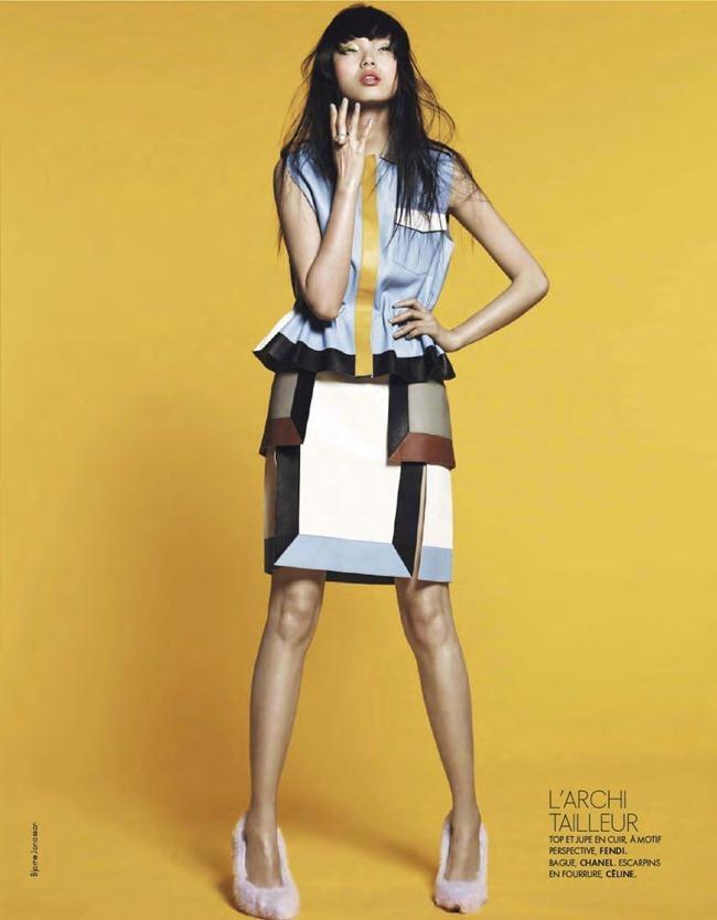 ELLE FRANCE- Xiao Wen Ju in Pop by Bjarne Jonasson. Michele Beaurenaut, February 2013, www.imageamplified.com, Image Amplified (6)