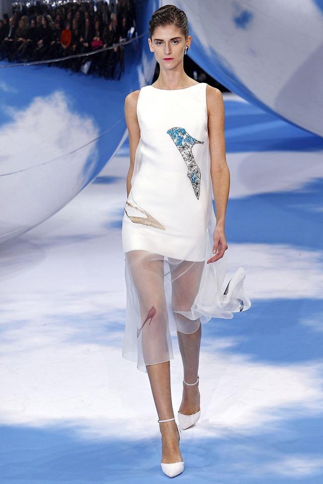 PARIS FASHION WEEK- Christian Dior Fall 2013. www.imageamplified.com, Image Amplified (35)