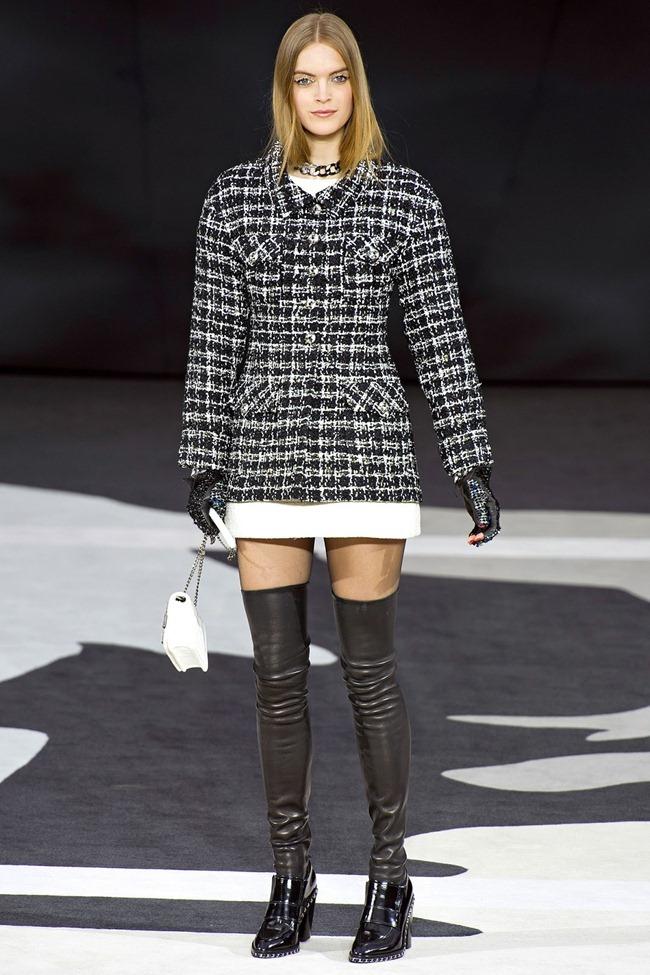PARIS FASHION WEEK- Chanel Fall 2013. www.imageamplified.com, Image Amplified (49)