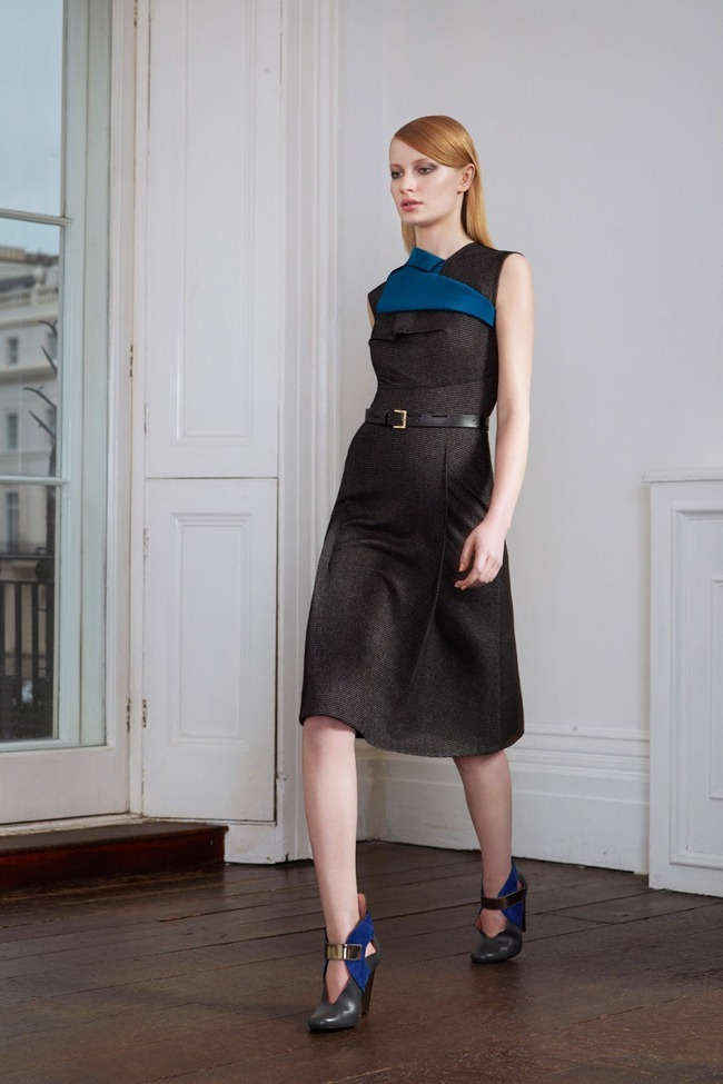 COLLECTION- Roland Mouret Pre-Fall 2013, www.imageamplified.com, Image Amplified (5)