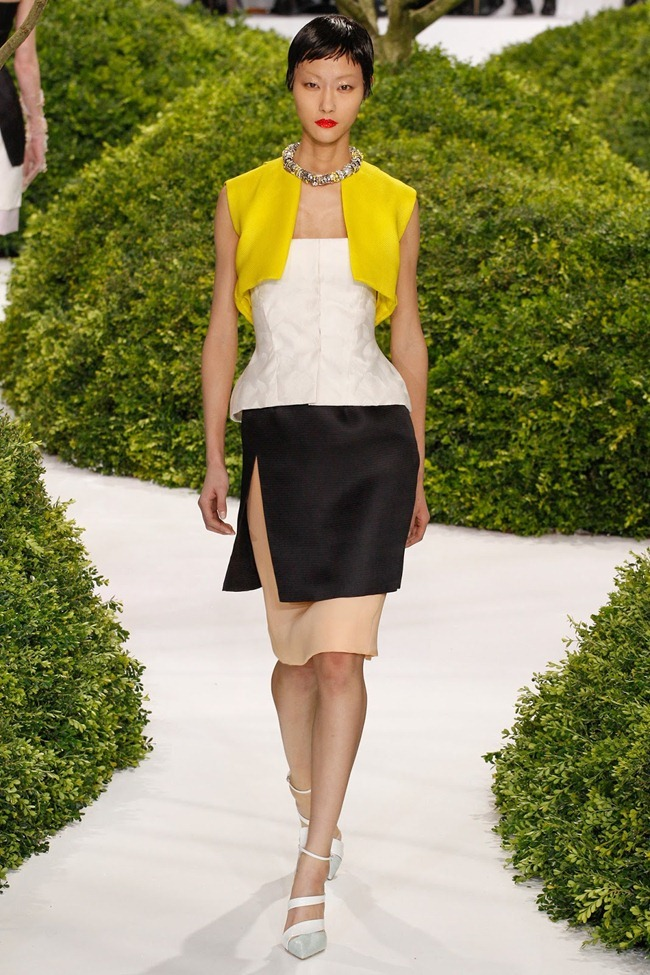 PARIS HAUTE COUTURE- Christian Dior Spring 2013. www.imageamplified.com, Image Amplified (29)
