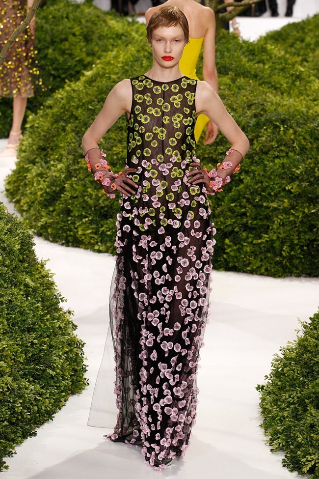 PARIS HAUTE COUTURE- Christian Dior Spring 2013. www.imageamplified.com, Image Amplified (34)