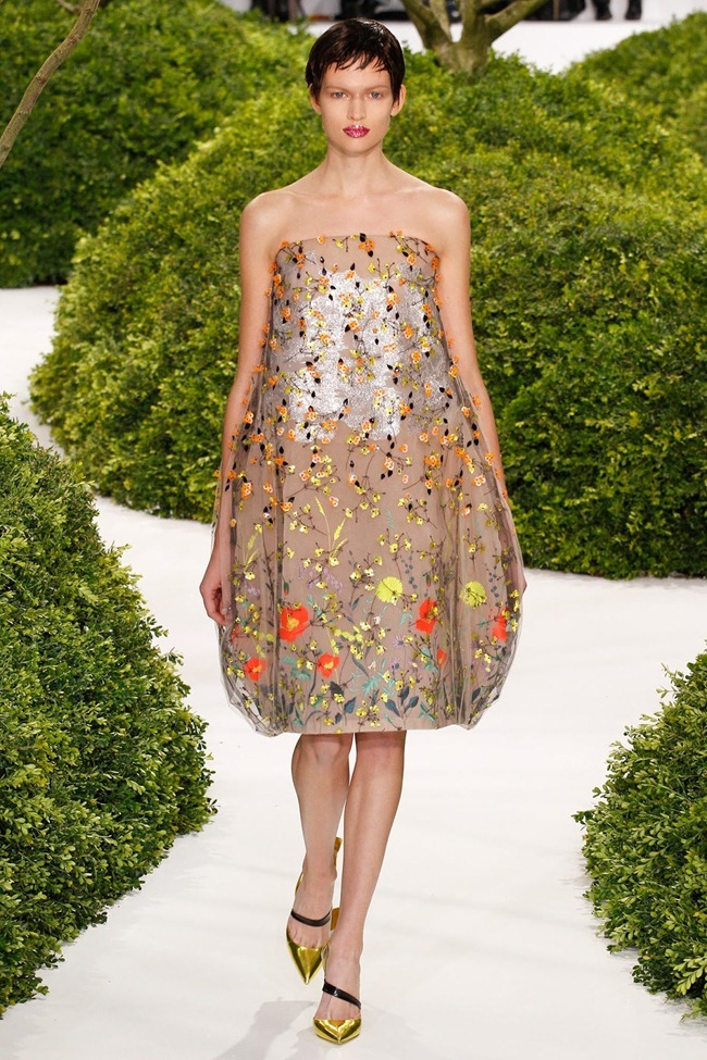 PARIS HAUTE COUTURE- Christian Dior Spring 2013. www.imageamplified.com, Image Amplified (38)