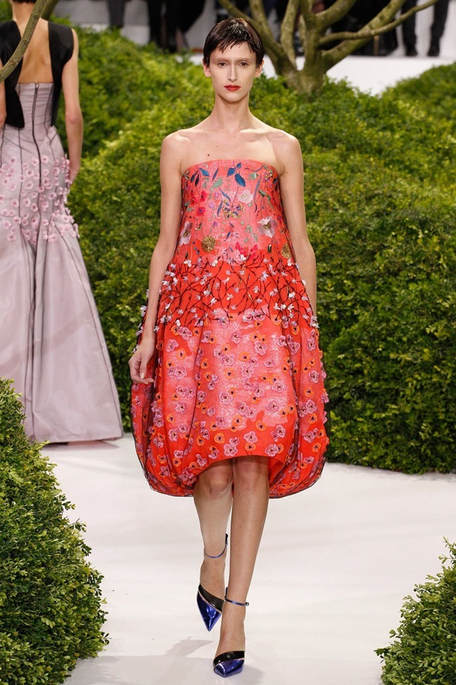 PARIS HAUTE COUTURE- Christian Dior Spring 2013. www.imageamplified.com, Image Amplified (39)