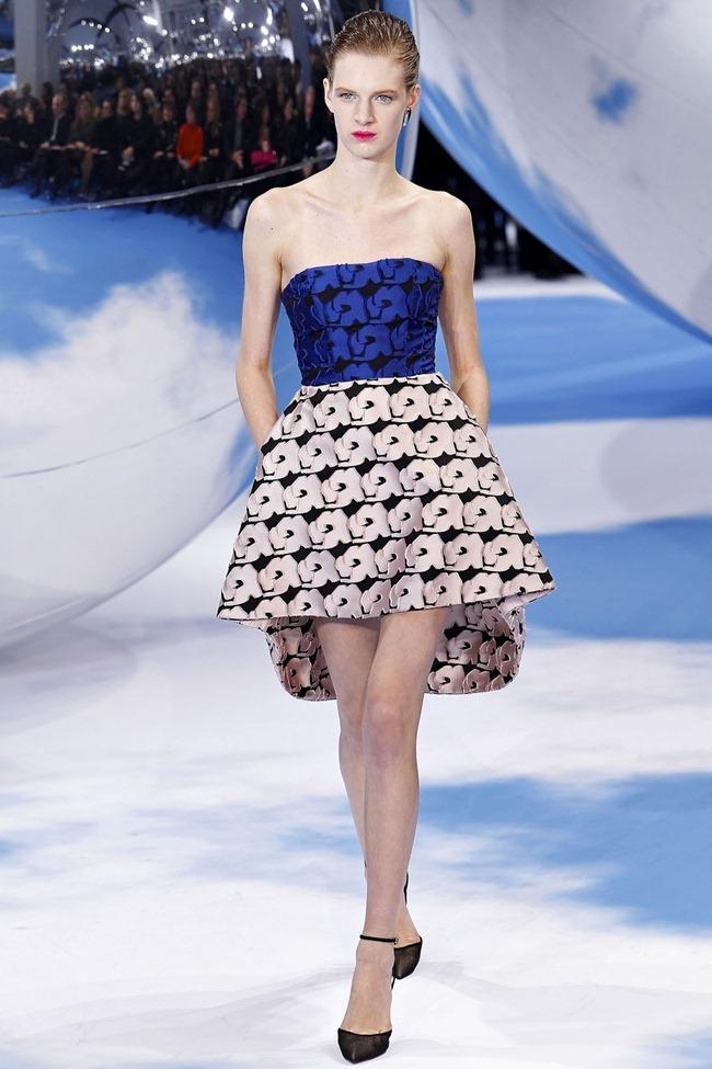 PARIS FASHION WEEK- Christian Dior Fall 2013. www.imageamplified.com, Image Amplified (12)