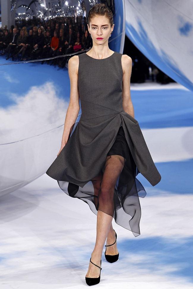 PARIS FASHION WEEK- Christian Dior Fall 2013. www.imageamplified.com, Image Amplified (39)