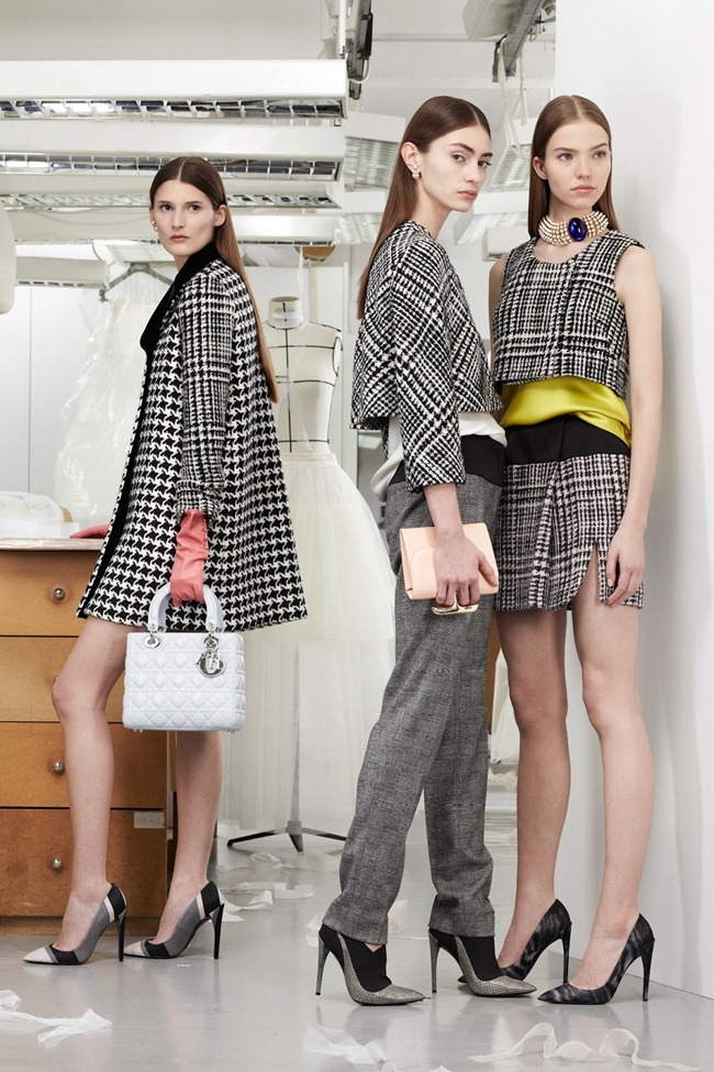 COLLECTION- Christian Dior Pre-Fall 2013. www.imageamplified.com, Image Amplified (7)