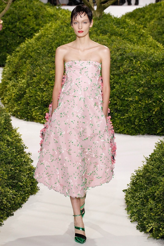 PARIS HAUTE COUTURE- Christian Dior Spring 2013. www.imageamplified.com, Image Amplified (37)