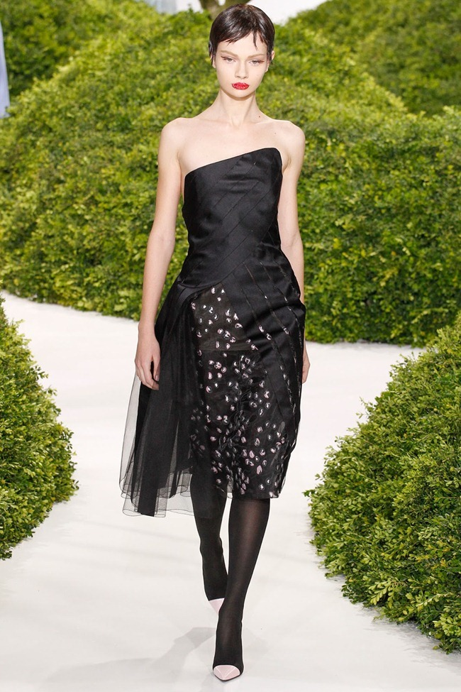 PARIS HAUTE COUTURE- Christian Dior Spring 2013. www.imageamplified.com, Image Amplified (8)
