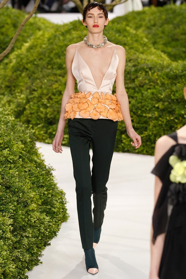 PARIS HAUTE COUTURE- Christian Dior Spring 2013. www.imageamplified.com, Image Amplified (21)