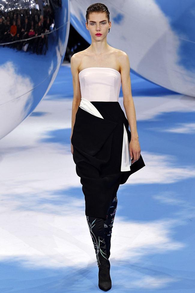 PARIS FASHION WEEK- Christian Dior Fall 2013. www.imageamplified.com, Image Amplified (38)