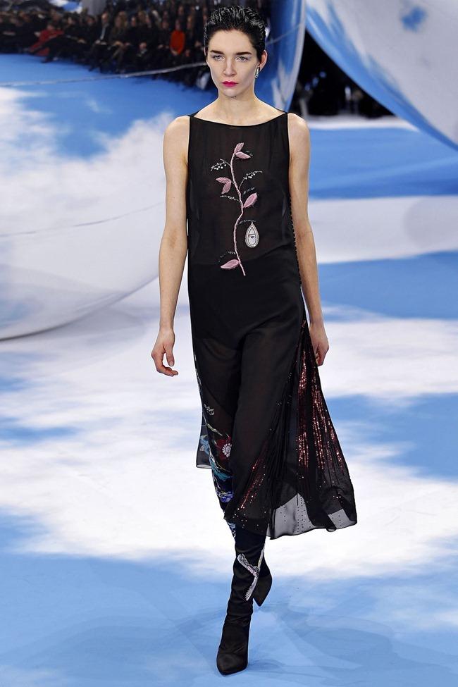 PARIS FASHION WEEK- Christian Dior Fall 2013. www.imageampli fied.com, Image Amplified (47)