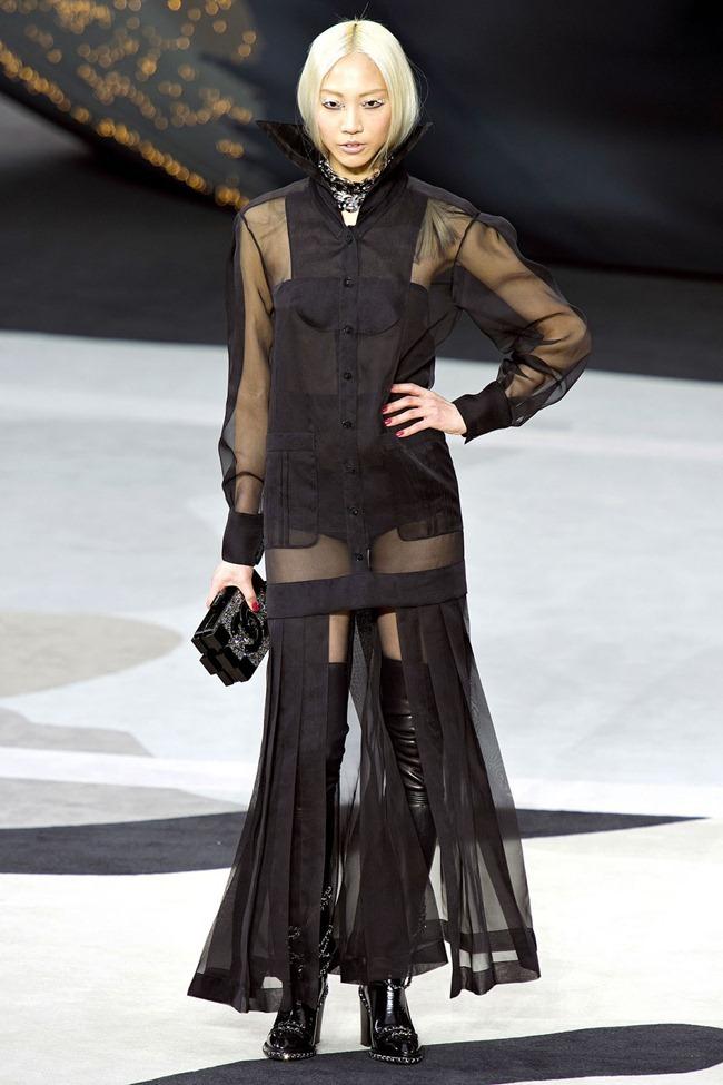 PARIS FASHION WEEK- Chanel Fall 2013. www.imageamplified.com, Image Amplified (78)
