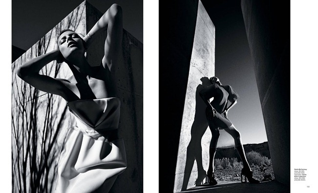 T STYLE MAGAZINE- Anja Rubik in Modernism Is A Message by Mario Sorrenti. Jane How, Spring 2013, www.imageamplified.com, Image Amplified (2)