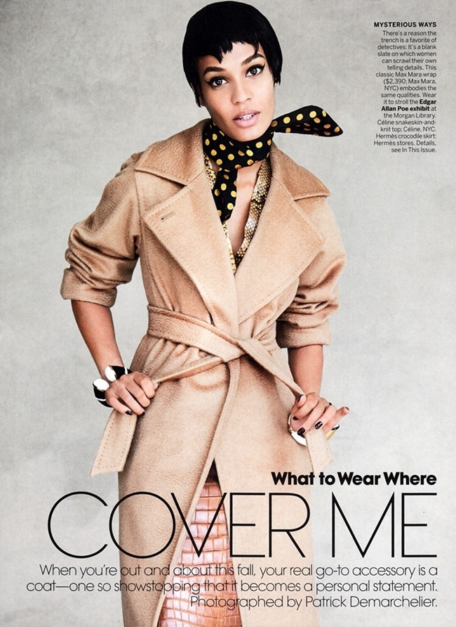 VOGUE MAGAZINE- Joan Smalls in Cover Me by Patrick Demarchelier. September 2013, www.imageamplified.com, Image Amplified (1)
