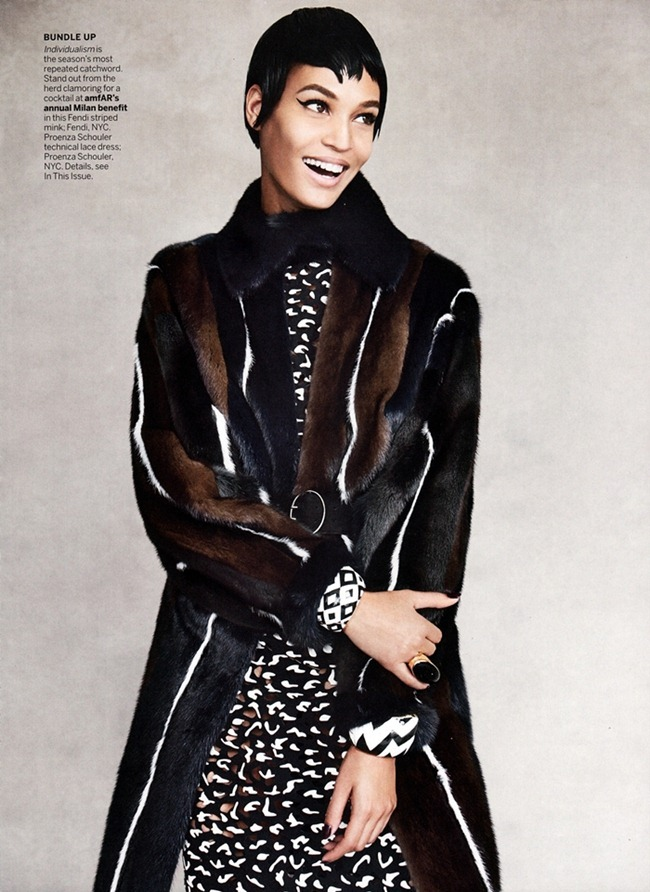 VOGUE MAGAZINE- Joan Smalls in Cover Me by Patrick Demarchelier. September 2013, www.imageamplified.com, Image Amplified (7)