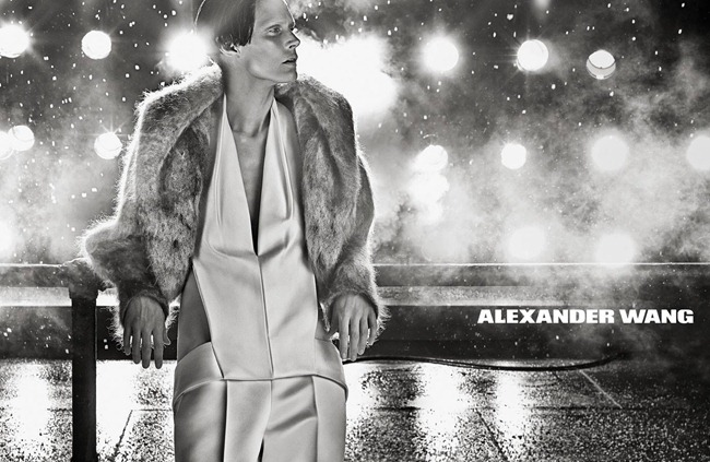 CAMPAIGN- Malgosia Bela for Alexander Wang Fall 2013 by Steven Klein. Camilla Nickerson, www.imageamplified.com, Image Amplified1