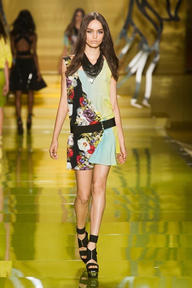MILAN FASHION WEEK- Versace Spring 2014. www.imageamplified.com, Image Amplified (11)