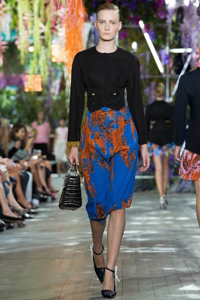 PARIS FASHION WEEK- Christian Dior Spring 2014. www.imageamplified.com, Image Amplified (2)