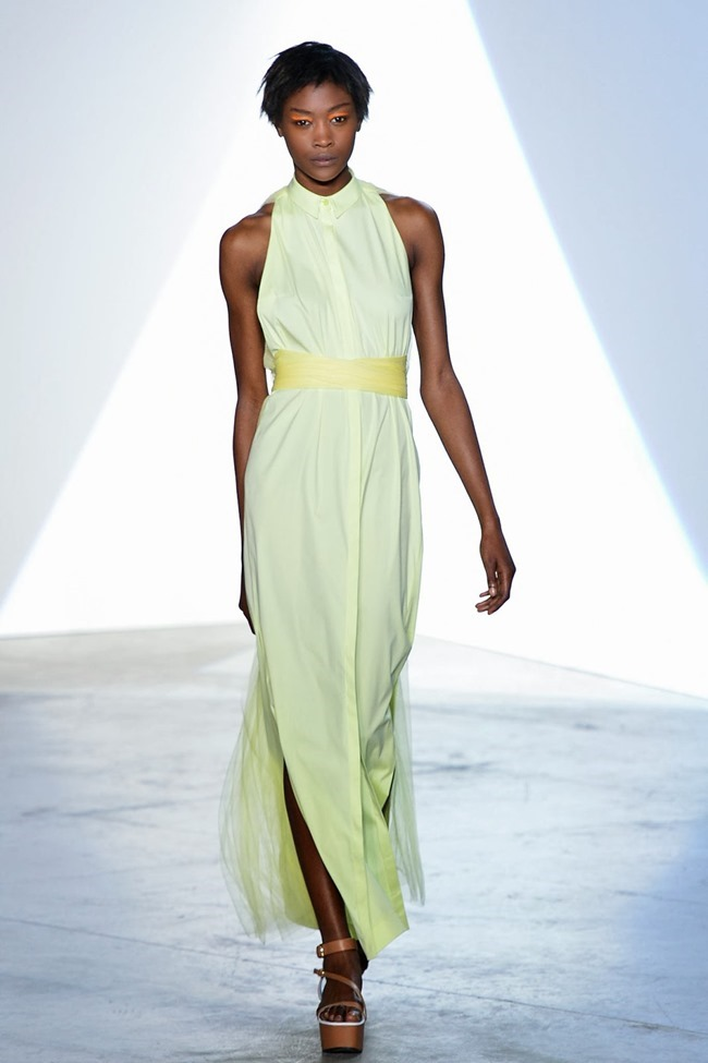 PARIS FASHION WEEK- Vionnet Spring 2014. www.imageamplified.com, Image Amplified (21)