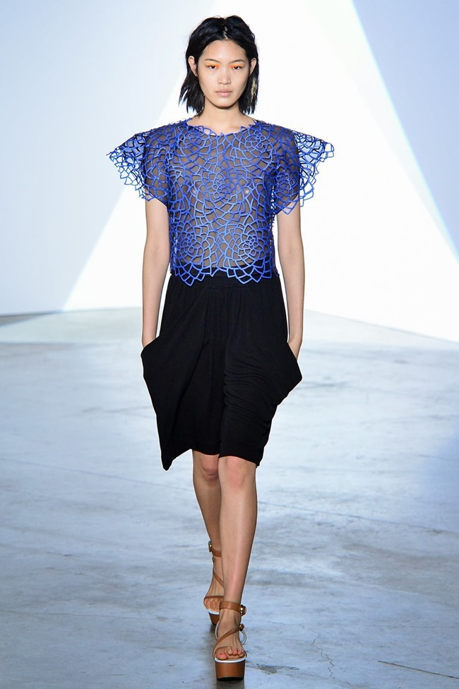 PARIS FASHION WEEK- Vionnet Spring 2014. www.imageamplified.com, Image Amplified (14)