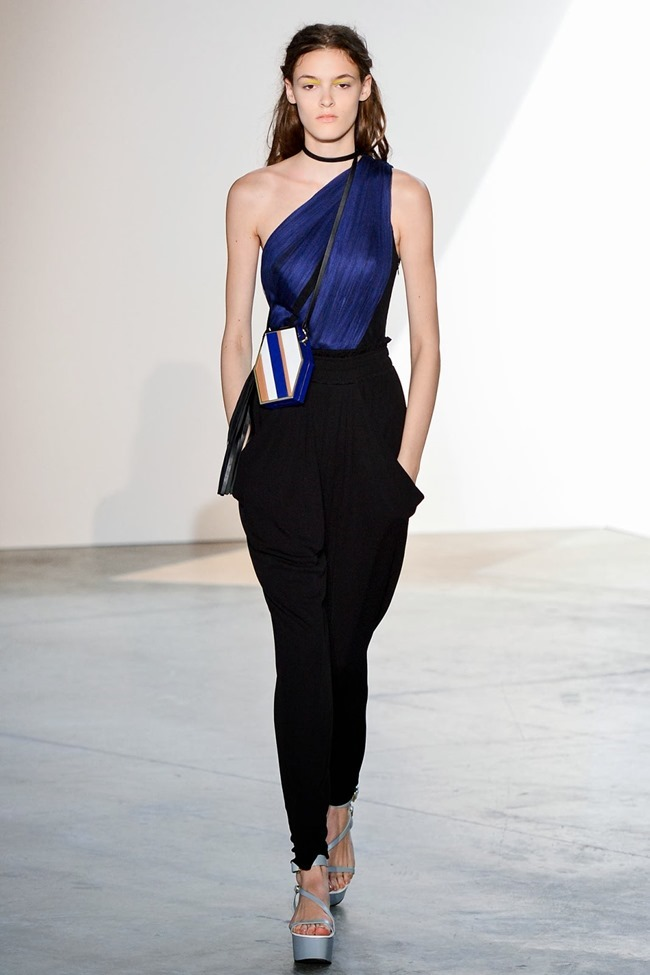PARIS FASHION WEEK- Vionnet Spring 2014. www.imageamplified.com, Image Amplified (15)