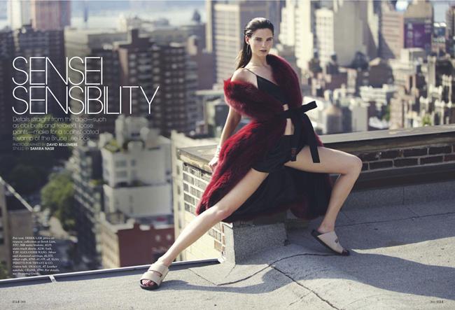 ELLE MAGAZINE- Ava Smith in Sensei Sensibility by David Bellemere. Samira Nasr, December 2013, www.imageamplified.com, Image Amplified (8)