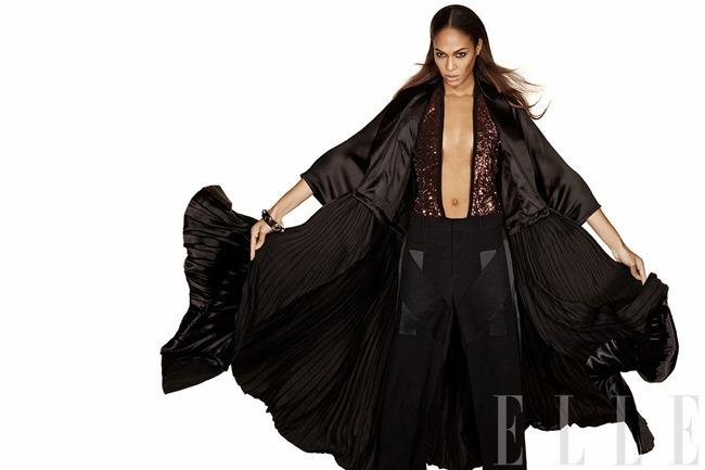 ELLE MAGAZINE- Joan Smalls by Michael Thompson. January 2014, www.imageamplified.com, Image amplified (2)