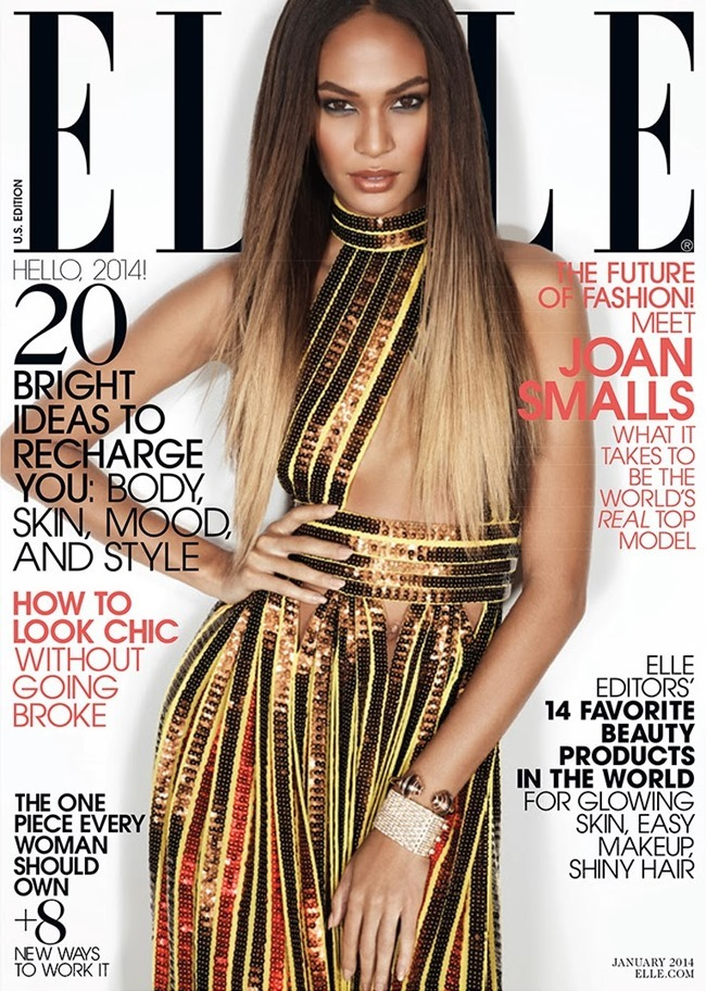 ELLE MAGAZINE- Joan Smalls by Michael Thompson. January 2014, www.imageamplified.com, Image amplified (3)