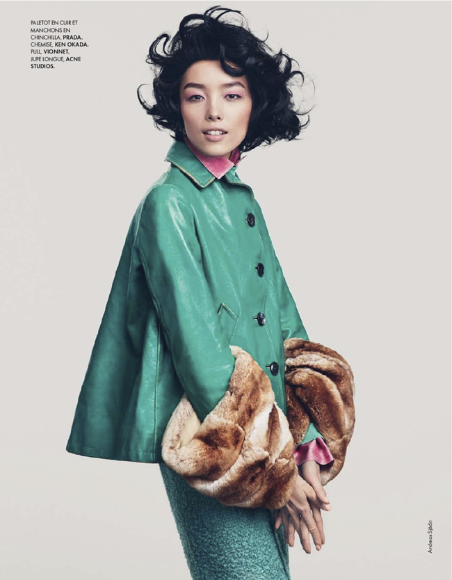 ELLE FRANCE- Fei Fei Sun in Couleurs Du Temps by Andreas Sjodin. Michele Beaurenaut, December 2013, www.imageamplified.com, Image amplified (3)