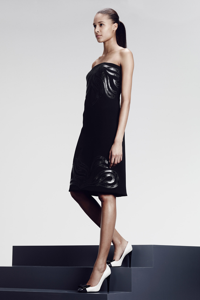 COLLECTION- Julia, Ileva, Tilda, Elisabeth, Josephine, Cindy, Marine, Idris, Magdalena & Lisanne for Bottega Veneta Pre-Fall 2014. www.imageamplified.com, Image Amplified (6)