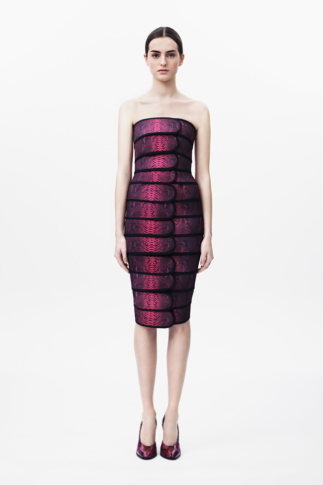 COLLECTION Georgia Taylor for Christopher Kane Pre-Fall 2014. www.imageamplified.com, Image amplified (19)