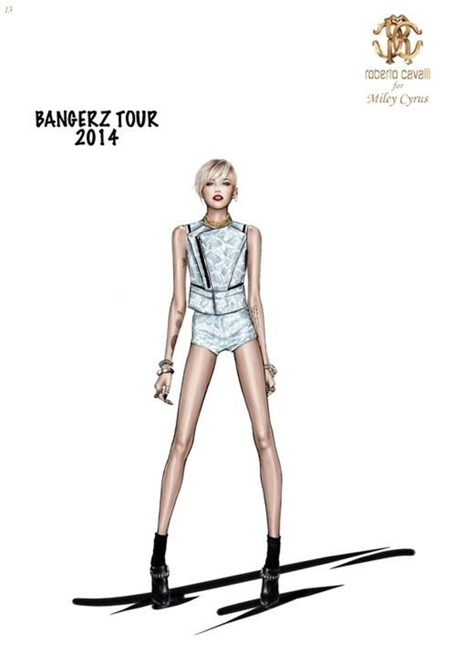 COLLECTION The Bangerz World Tour by Roberto Cavalli. www.imageamplified.com, Image Amplified (4)