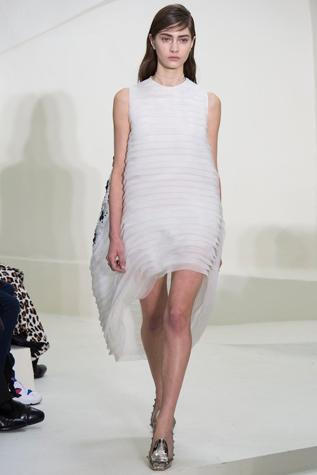 PARIS HAUTE COUTURE Christian Dior Spring 2014. www.imageamplified.com, Image Amplified (25)