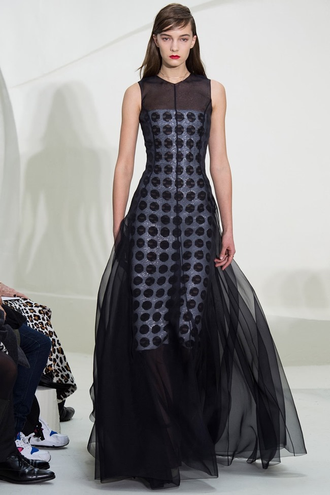 PARIS HAUTE COUTURE Christian Dior Spring 2014. www.imageamplified.com, Image Amplified (33)