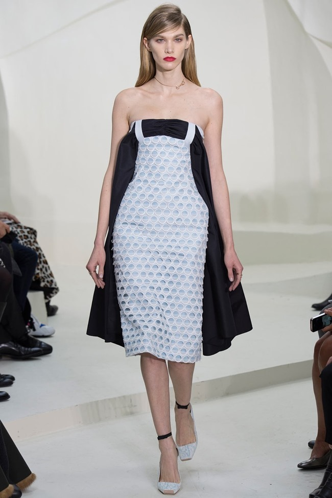 PARIS HAUTE COUTURE Christian Dior Spring 2014. www.imageamplified.com, Image Amplified (34)